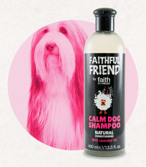 Faithful Friend levendulás kutyasampon 400 ml